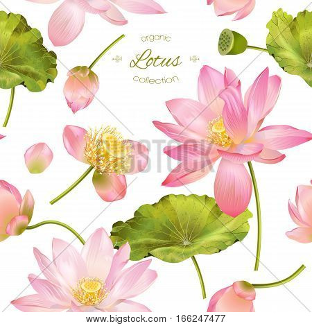 Vector botanical seamless pattern with pink lotus flowers. Background design for natural cosmetics health care and ayurveda products yoga center. Best for wrapping paper