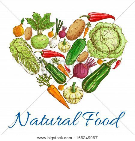 Heart of vegetables. Vector natural vegetarian food. Vegan fresh natural organic farm vegetables cabbage and zucchini, pea, cucumber, onion and chinese cabbage napa, carrot and eggplant, tomato and garlic, beet, pepper, kohlrabi, potato, beet