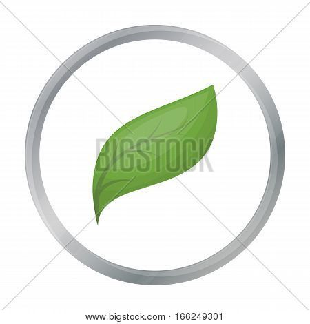 Eco leaf icon in outline design isolated on white background. Bio and ecology symbol stock vector illustration. - stock vector
