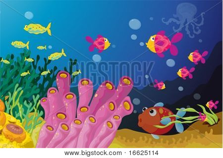 Deep water fish in their nautral enviroment