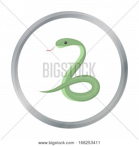 Snake icon cartoon. Singe animal icon from the big animals cartoon. - stock vector