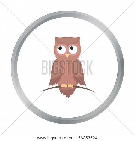 Owl icon cartoon. Singe animal icon from the big animals cartoon. - stock vector