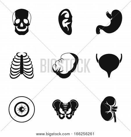 Human organs icons set. Simple illustration of 9 human organs vector icons for web