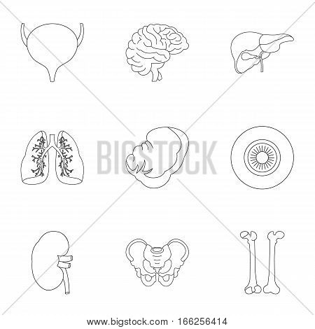 Human organs icons set. Outline illustration of 9 human organs vector icons for web