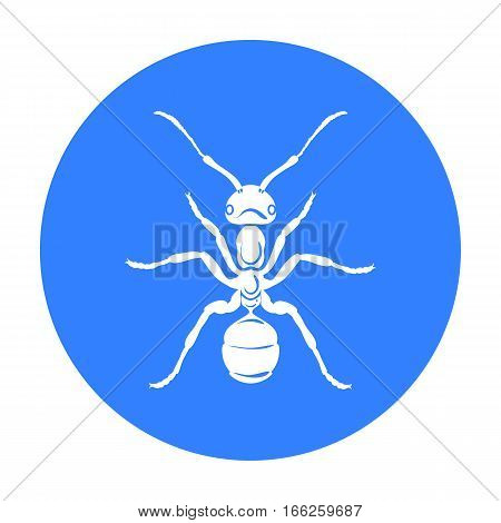 Ant icon in blue design isolated on white background. Insects symbol stock vector illustration.