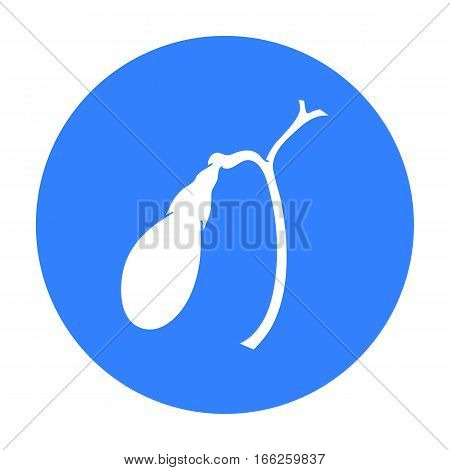 Human gallbladder icon isolated on white background. Human organs symbol vector illustration.