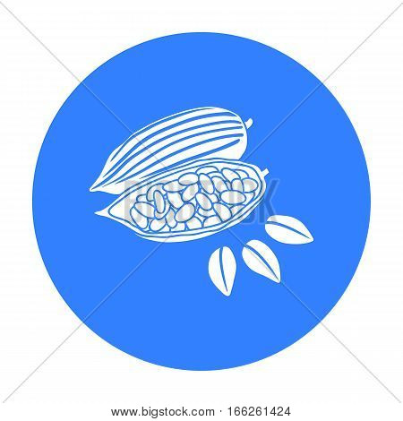 Roasted cacao beans icon isolated on white background. Herb an spices symbol vector illustration.