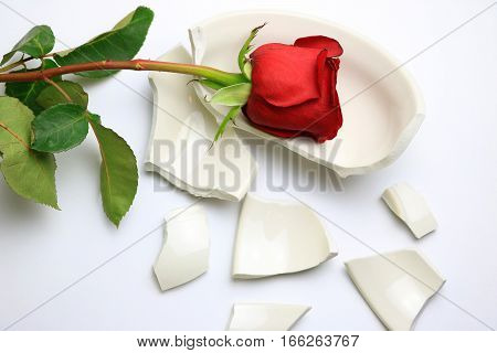 Red Rose laying on a broken bowl