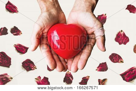 Elderly hands holding red heart, with rose petal backgrounds