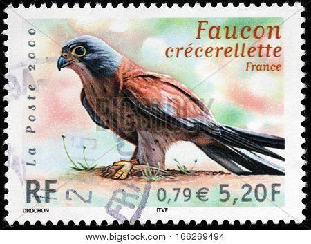 LUGA RUSSIA - SEPTEMBER 18 2015: A stamp printed by FRANCE shows the lesser kestrel (Falco naumanni) - a small falcon circa 2000