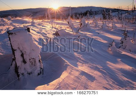 Snowstorm on top of a mountain bathed in golden morning sun photographed backlit