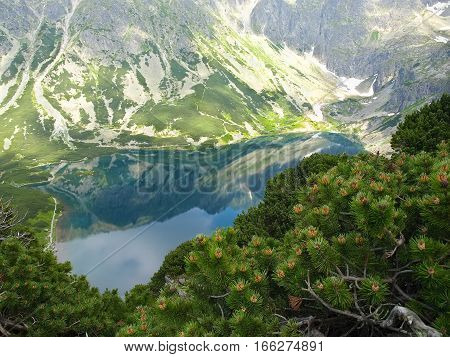 Top view of a mountain lake among craggy mountain slopes with thickets of a creeping pine on the foreground