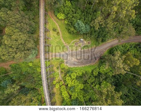 Aerial View Of Old Trestle Bridge Among Ferns And Eucalyptuses In Victoria, Australia.