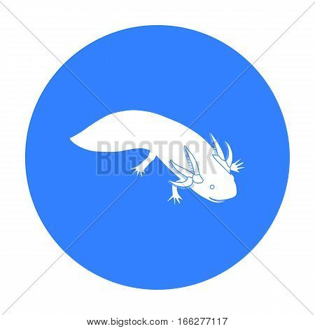 Mexican axolotl icon in blue style isolated on white background. Mexico country symbol vector illustration.