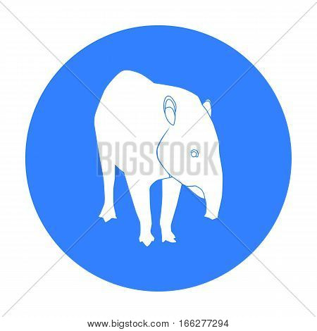 Mexican tapir icon in blue style isolated on white background. Mexico country symbol vector illustration.