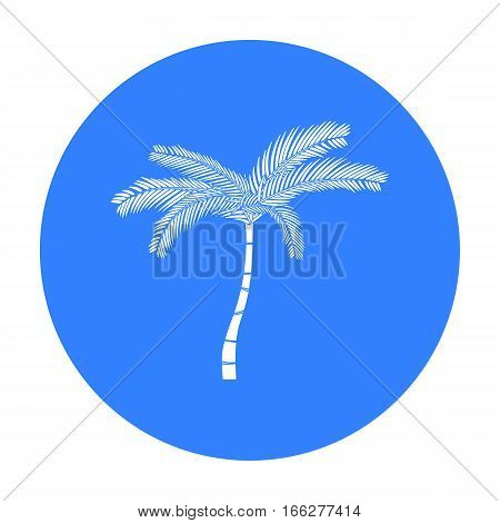 Mexican fan palm icon in blue style isolated on white background. Mexico country symbol vector illustration.