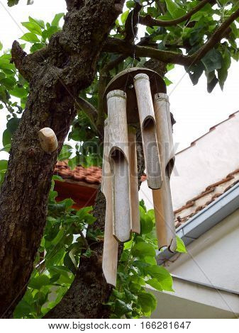 Photo of bamboo wind chimes on a tree