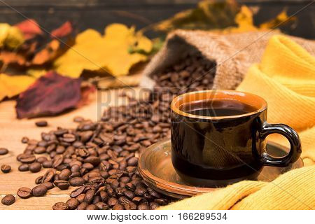 Cup Of Coffee, Yellow Scarf, Roasted Coffee Beans