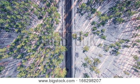 Panorama of forest with highway in the middle in winter on a sunny day. Aerial view.