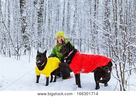 Active Girl Walk The Dog In The Winter Forest.