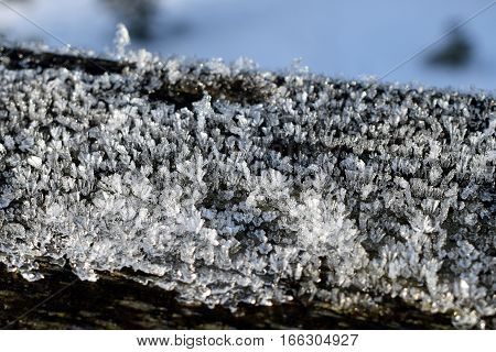 Close up of ice crystals on wood.
