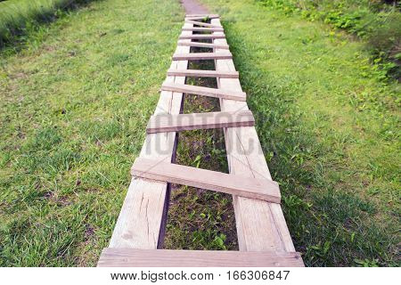 Path from wooden hammered boards on green herbs a background