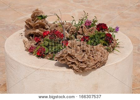 Desert Rose in the flowerbed. Crystal sand and gypsum