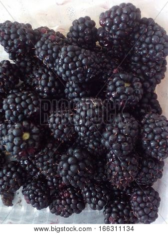 delicious and mouthwatering summer still life: a ripe sour-sweet blackberries are heaped on the plate