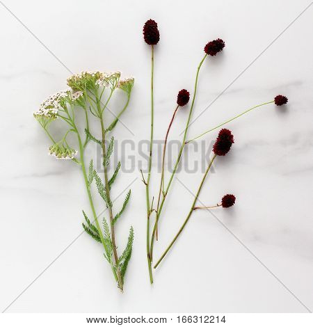 abstract, art, background, blooming, blossom, bouquet, bud, button, card, celebration, close-up, color, composition, creativity, flat lay, flower, gray, green, herb, invitation, leaf, marble, meadow, minimal, nature, paper, photographic, photography, plan