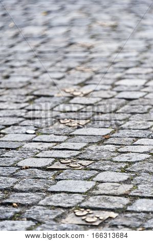Cobblestone old city pavement with bronze animal paw footsteps.