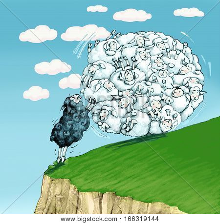 black sheep trying to stop a herd that rolls into a ravine