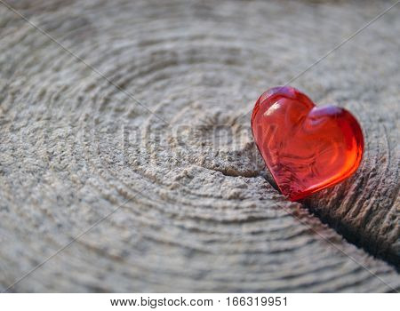 Decorative red heart on a tree stump texture.Valentine heart.Saint Valentine's Day or Love concept.Selective focus.