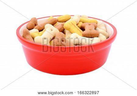 Dry Bone-shaped Dog Biscuits In A Red Pet Food Bowl