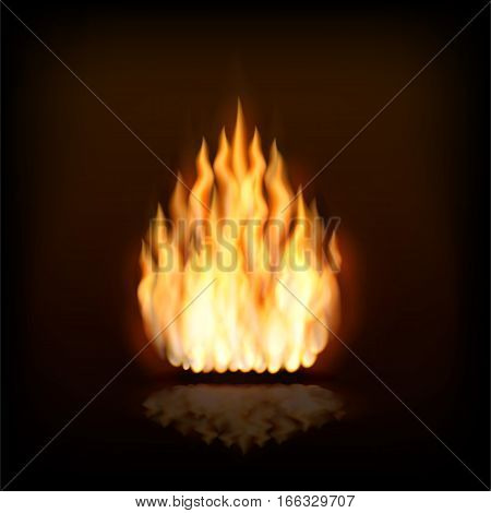 Vector image of fire, bright tongues of flame.