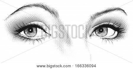 Female eyes look. Black and white vector etching illustration poster
