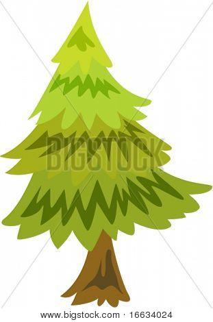 illustration of coniferous tree on white