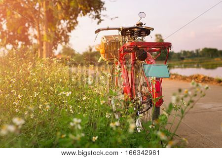 Red Bicycle On Countryside Road With Grasses And Flower At Outdoor Paddy Field.