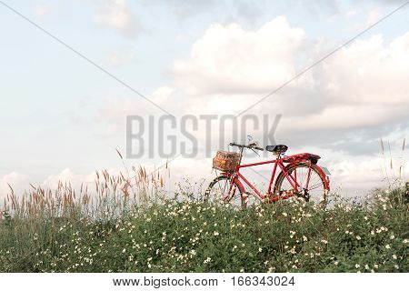 Bicycle park and outdoor nature background use.