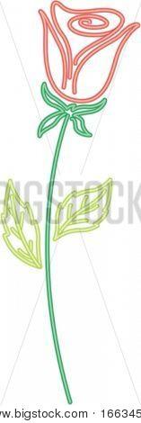 illustration of flower on white
