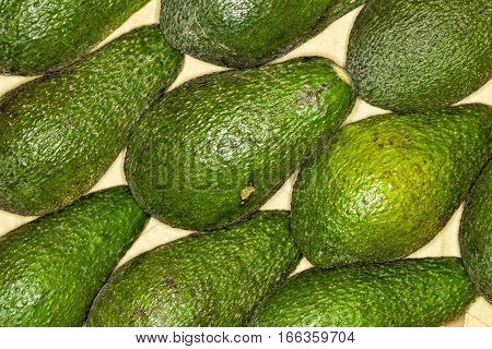 Avocado, alligator pear regular background. Macro. Full of details. Avocado or alligator pear is a fruit, botanically a large berry that contains a single seed.