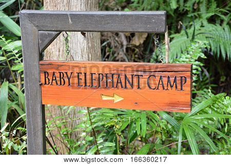 CHIANG RAI THAILAND - JANUARY 8 2017: Baby Elephant Camp Sign. At the Anantara Golden Triangle Elephant Camp a charity designed to help elephants and their handlers.