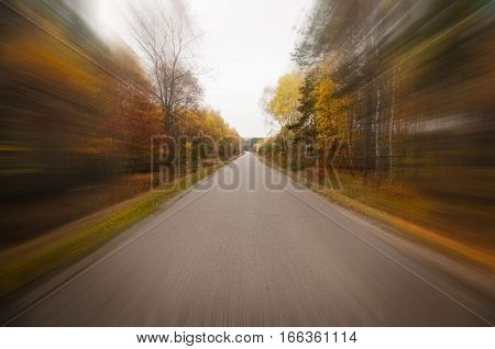 Country road on an autumn day - driving through a forest fall time