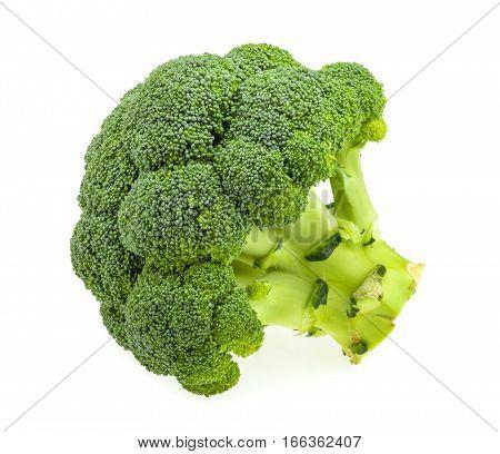 Fresh broccoli isolated on white background. close up