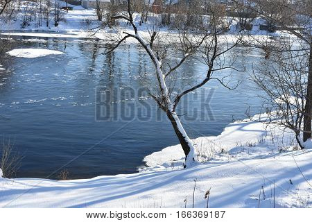 TREES RIVER WATER WINTER cold SNOW the river Bank