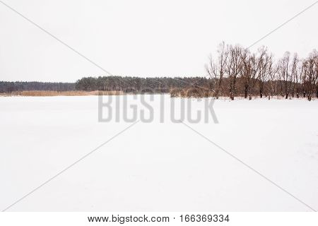 Frozen River With Forest In The Background
