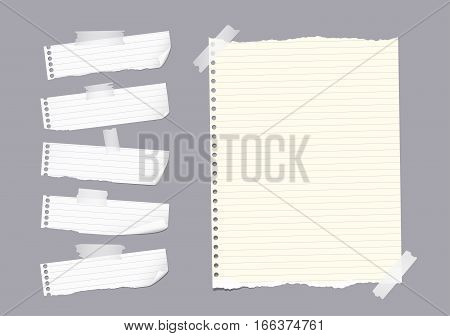 Ripped ruled note, notebook, copybook paper sheet, strips stuck with sticky tape on gray background.