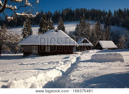 Snowy old wooden house in winter in a forest village