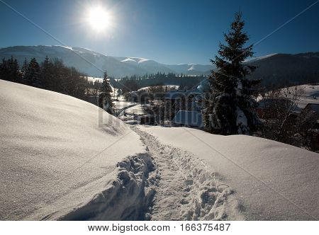 Winter snowy landscape of a sunny day with blue sky