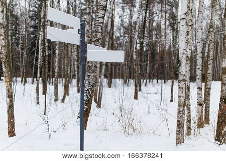Pure pointer on road in winter forest day