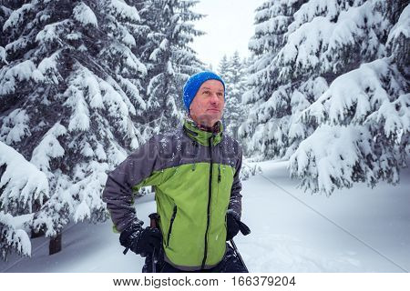 Sporty Man With Trekking Poles Stands In The Pine Forest